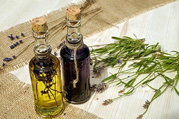 aceite sector agroalimentario andaluz