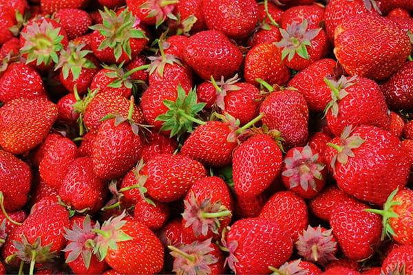 fresas alimentos andalucia